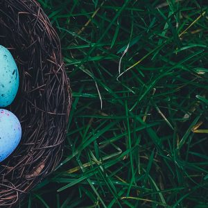 making the most of your easter service with seth muse and the seminary of hard knocks podcast